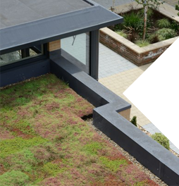 Want an instant green roof?